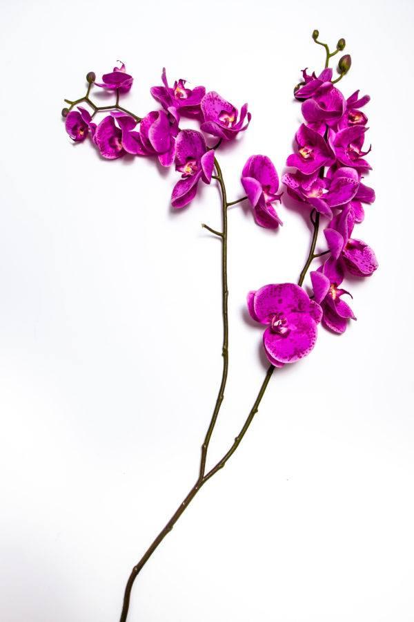 Искусственная орхидея Phalenopsis X2 H135210046