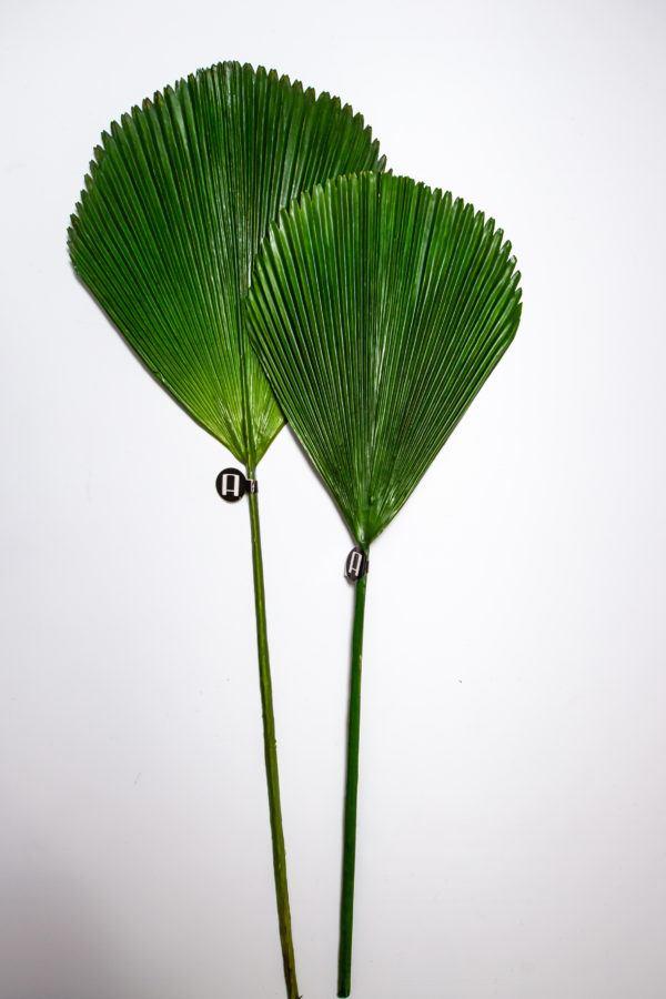 Искусственные пальмовые листья (набор из 2 шт) H98230054